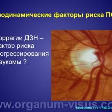 Киселева Т.Н. Допплеровские методы в оценке нарушений гемодинамики глаза при первичной открытоугольной глаукоме. Доклад на РООФ-2014 (AROF-2014). Информационный партнер офтальмологический портал Орган зрения www.organum-visus.com