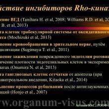 Астахов Ю.С. Медикаментозное лечение глаукомы: ближайшее и отдаленное будущее. Доклад на РООФ-2014 (AROF-2014). Информационный партнер офтальмологический портал Орган зрения www.organum-visus.com