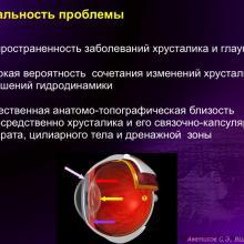Аветисов С.Э. Хирургия катаракты и глаукомы: есть ли простые решения? Доклад на ВШО-2016. Информационный партнер офтальмологический портал Орган зрения www.organum-visus.com